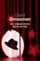 Couverture : Un cheval entre dans un bar David Grossman