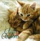 Couverture : Chats & chatons : calendrier 2017