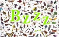 Bzzz...