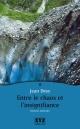 Couverture : Entre le Chaos et l'Insignifiance Jean Désy