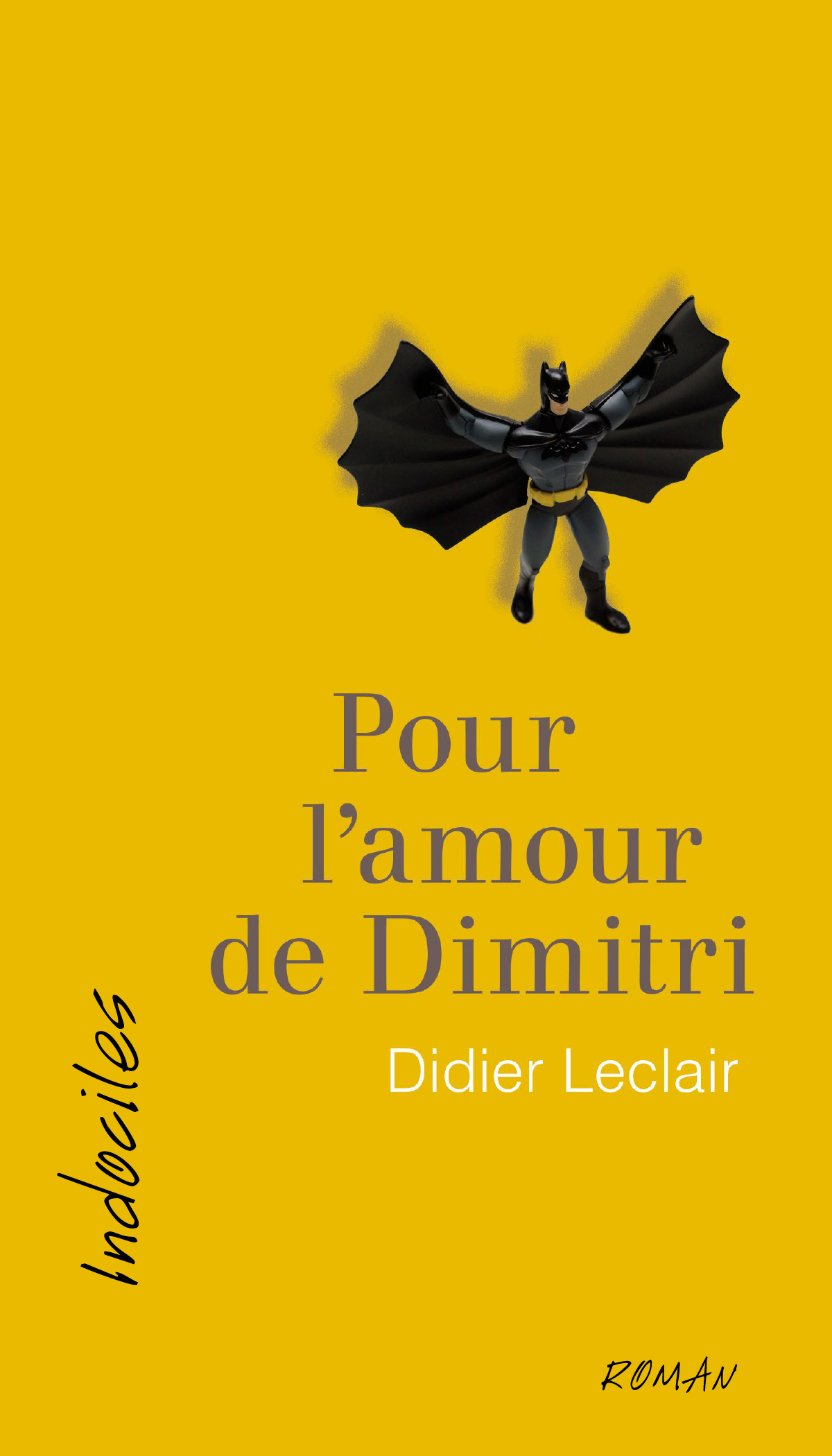 Couverture : Pour l'amour de Dimitri Didier Leclair