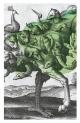 Couverture : Autobiographie de l'esprit Élise Turcotte