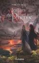 Couverture : Les fées du Phénix T.1 : La tempête de Ceithir Isabelle Roy