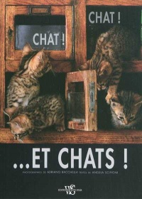 Chat Chat et Chats