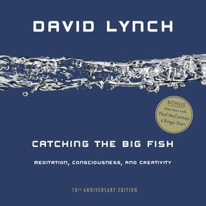 Vignette du livre Catching the Big Fish