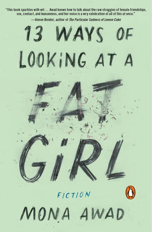 Vignette du livre 13 Ways of Looking at a Fat Girl