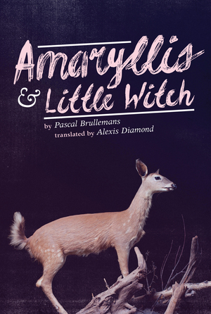 Vignette du livre Amaryllis & Little Witch