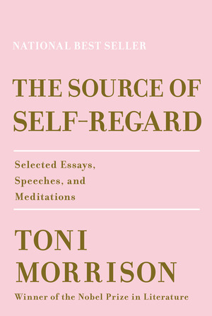 Vignette du livre The Source of Self-Regard