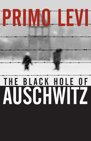 Vignette du livre The Black Hole of Auschwitz