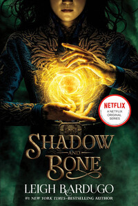 Vignette du livre Shadow and Bone