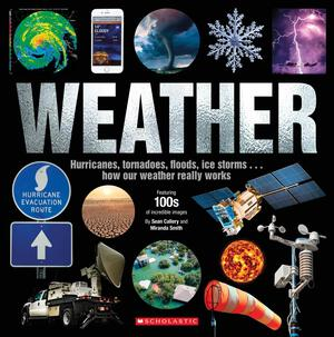 Vignette du livre Weather