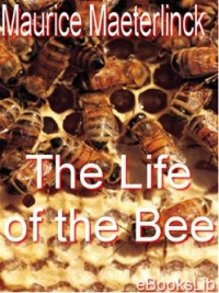 Vignette du livre The Life of the Bee