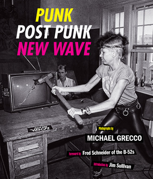 Vignette du livre Punk, Post Punk, New Wave