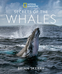 Vignette du livre Secrets of the Whales