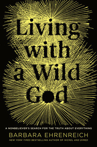 Vignette du livre Living with a Wild God