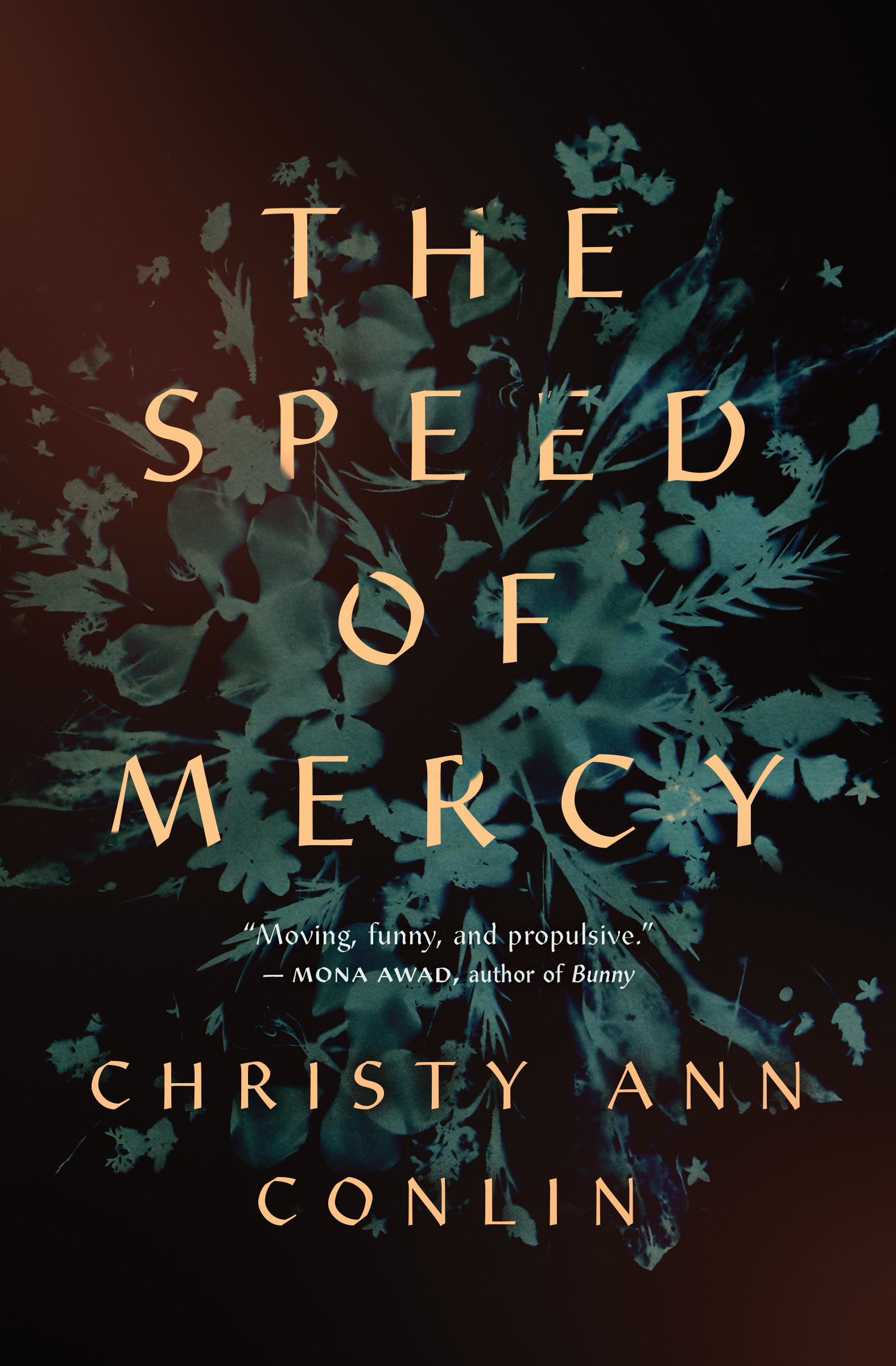 The Speed of Mercy - Christy Ann Conlin