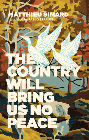 Vignette du livre The Country Will Bring Us No Peace