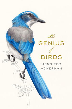 Vignette du livre The Genius of Birds