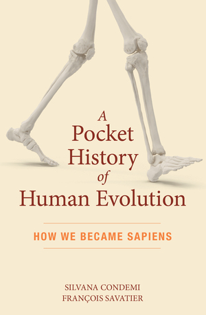 Vignette du livre A Pocket History of Human Evolution