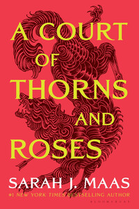 Vignette du livre A Court of Thorns and Roses