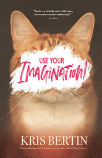 Vignette du livre Use Your Imagination!