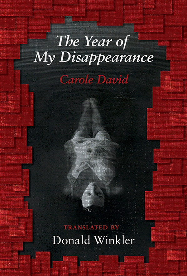 Vignette du livre The Year of My Disappearance