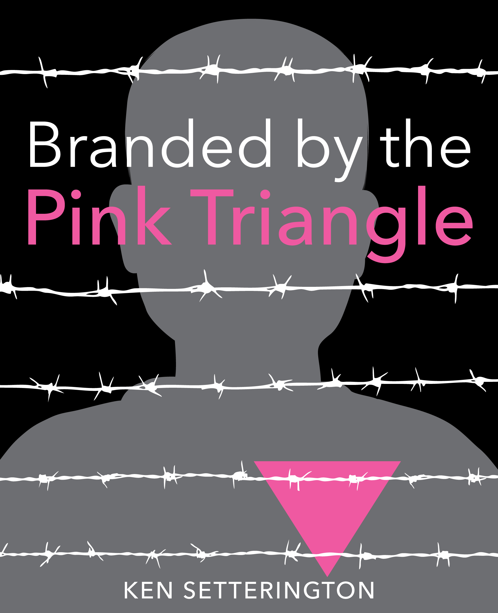 Vignette du livre Branded by the Pink Triangle