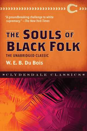 Vignette du livre The Souls of Black Folk