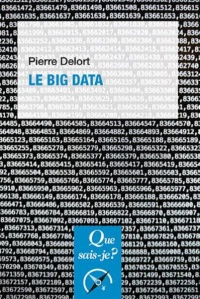 Vignette du livre Le big data - Pierre Delort