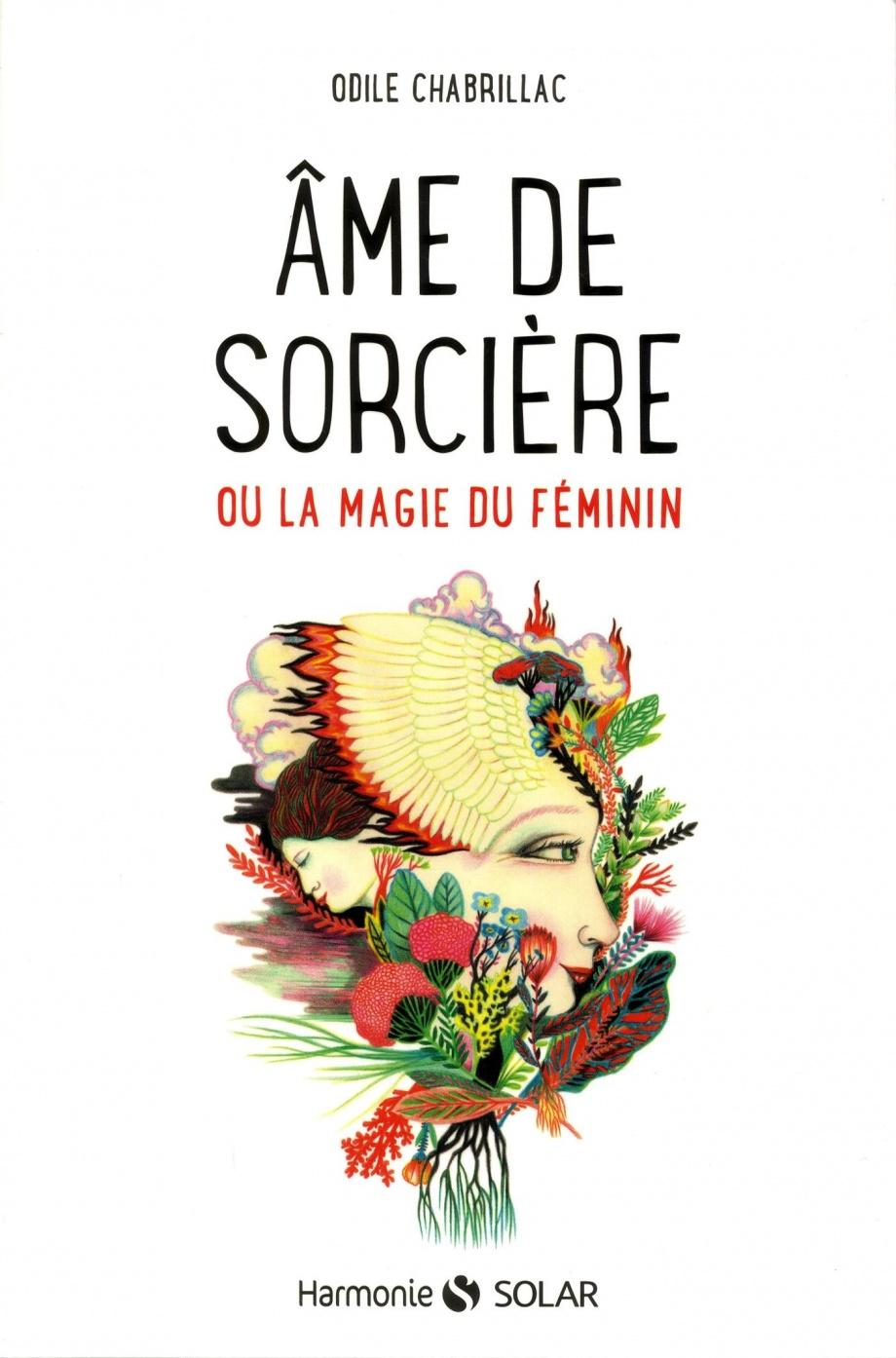 https://images.leslibraires.ca/books/9782263148873/front/9782263148873_large.jpg