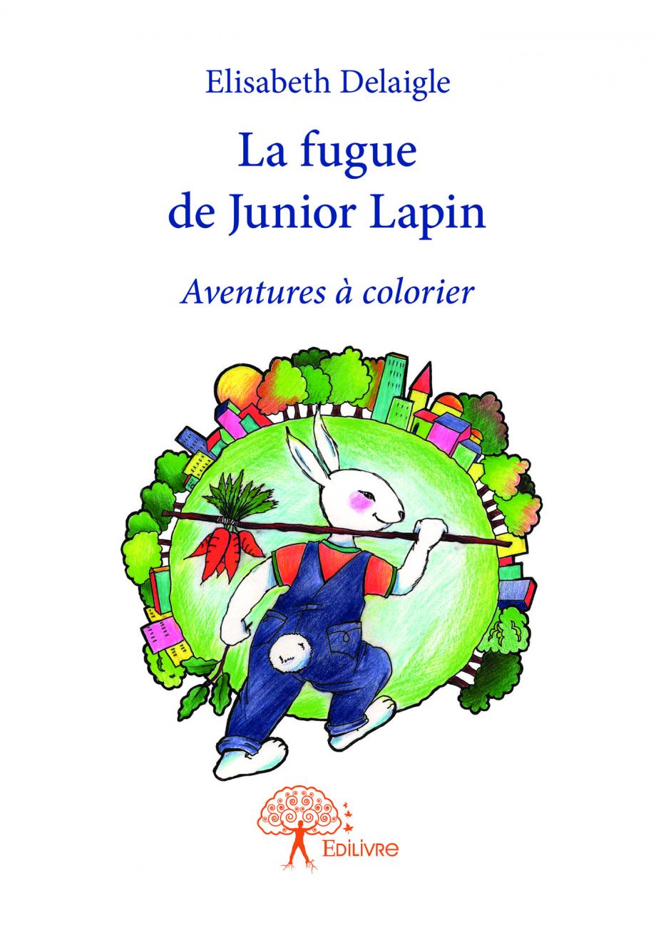 La fugue de Junior Lapin par Elisabeth Delaigle   Leslibraires.ca
