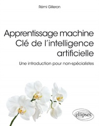 Vignette du livre Apprentissage machine : clé de l'intelligence artificielle - Rémi Gilleron
