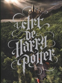 Vignette du livre L'art de Harry Potter