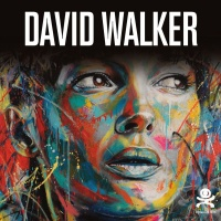 Vignette du livre David Walker : Beautiful Chaos - Marie Aschehoug-Clauteaux