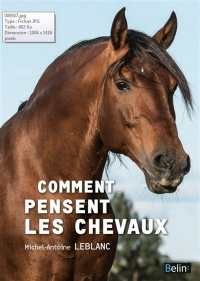 Comment pensent les chevaux, Andy Booth
