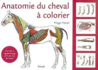 Anatomie du cheval à colorier - Maggie Raynor