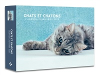 Chats et chatons : l'agenda-calendrier 2020