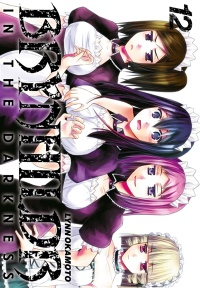 Vignette du livre Brynhildr in the Darkness T.12