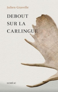 Debout sur la carlingue - Julien Gravelle