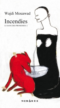 Vignette du livre Incendies