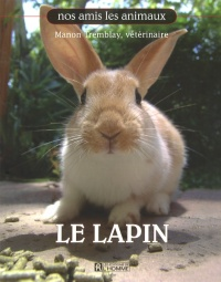 Le lapin - Manon Tremblay