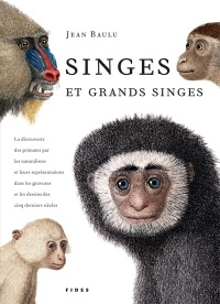 Singes et Grands Singes