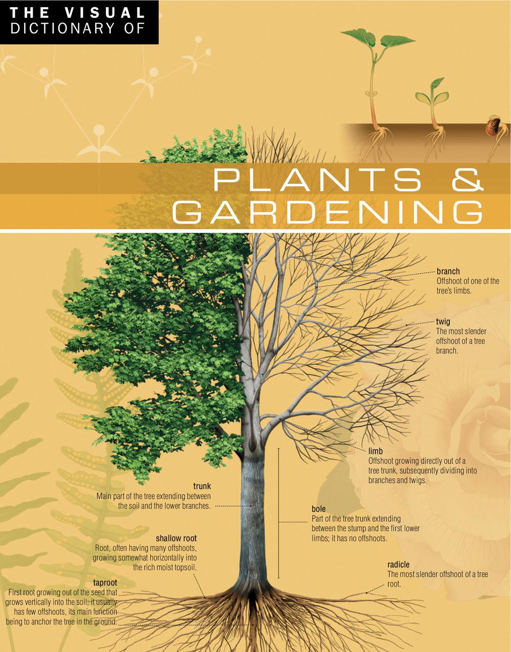 The Visual Dictionary of Plants & Gardening, Jean-Claude Corbeil