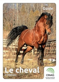 Le cheval, 2e édition, Denis Bouvier