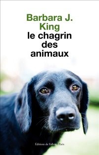 Le chagrin des animaux - Barbara J. King