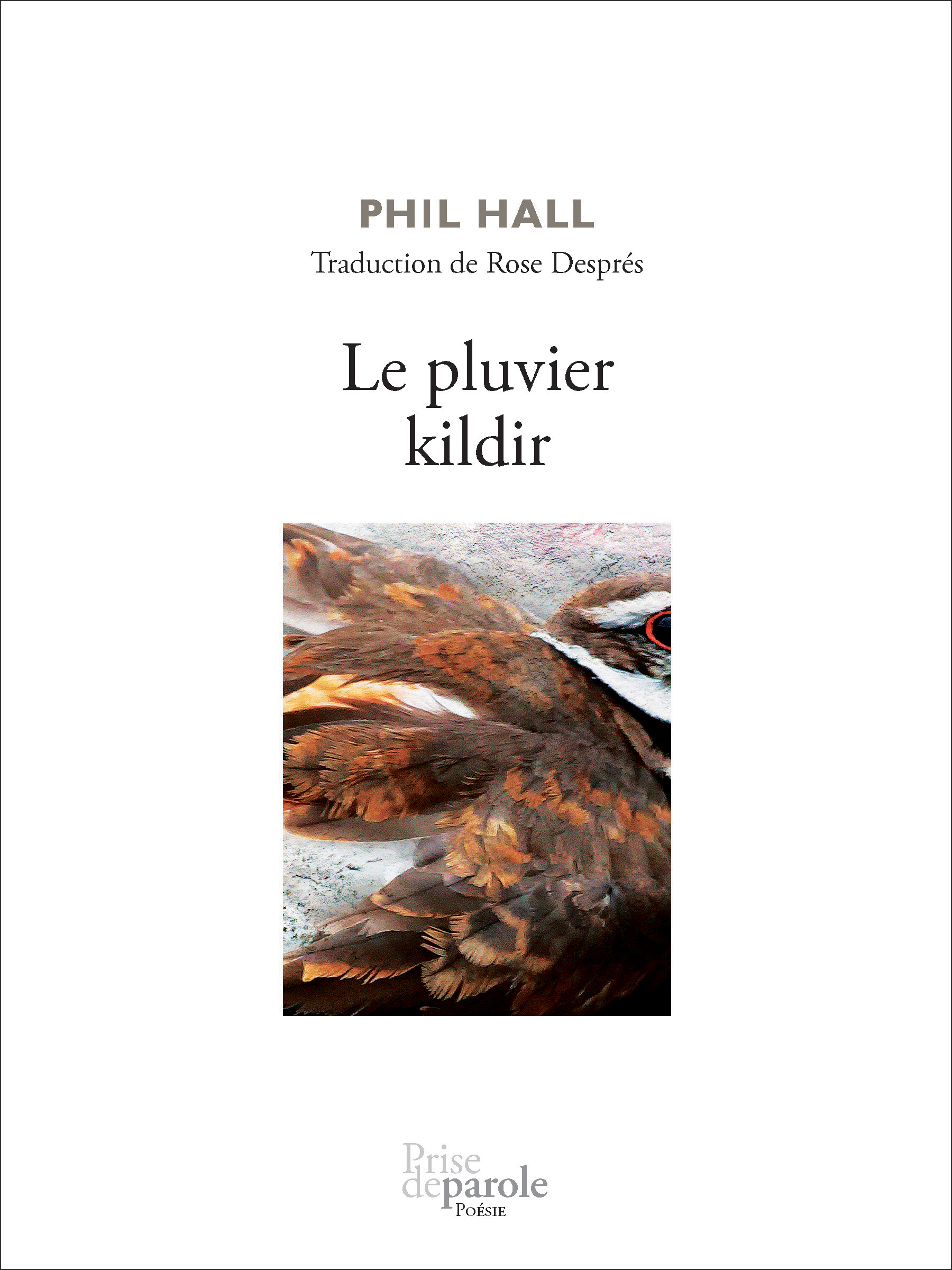 Vignette du livre Le pluvier killdir - Phil Hall