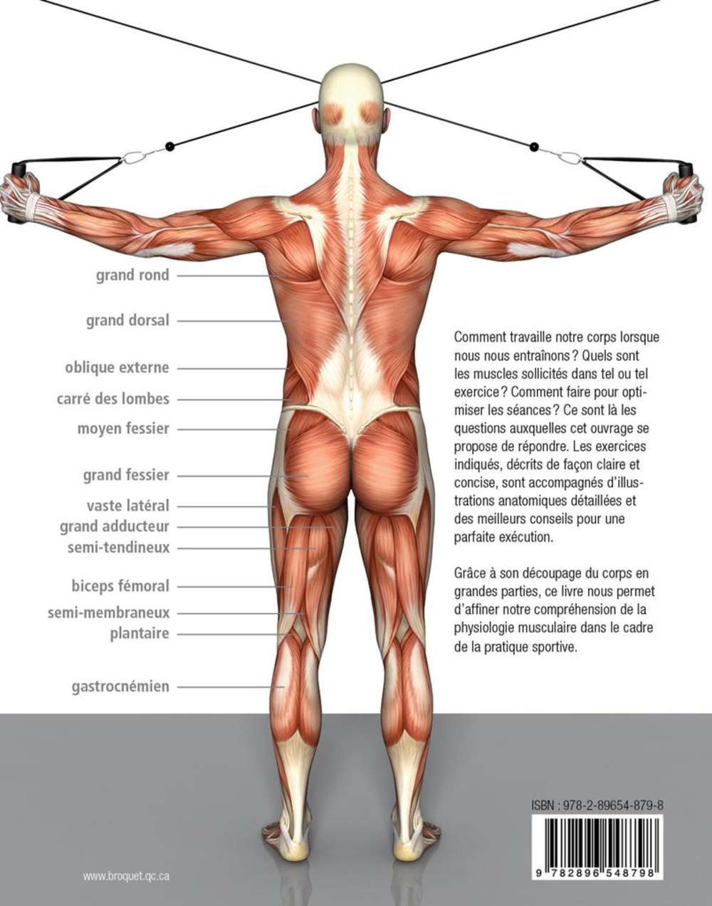 Musculation: Anatomie et mouvements - Pat Manocchia revers