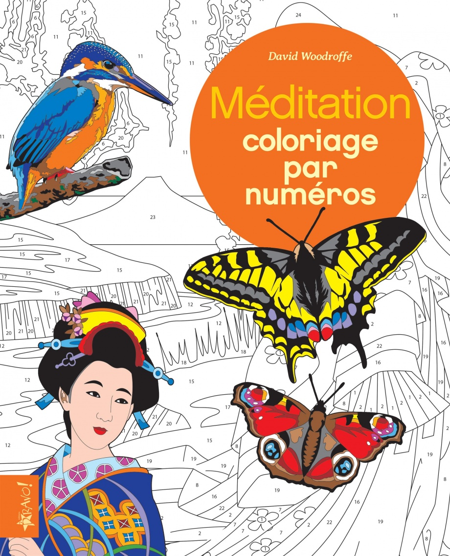 M ditation coloriage par num ro par david woodroffe loisirs coloriage anti stress adultes - Coloriage a numero ...