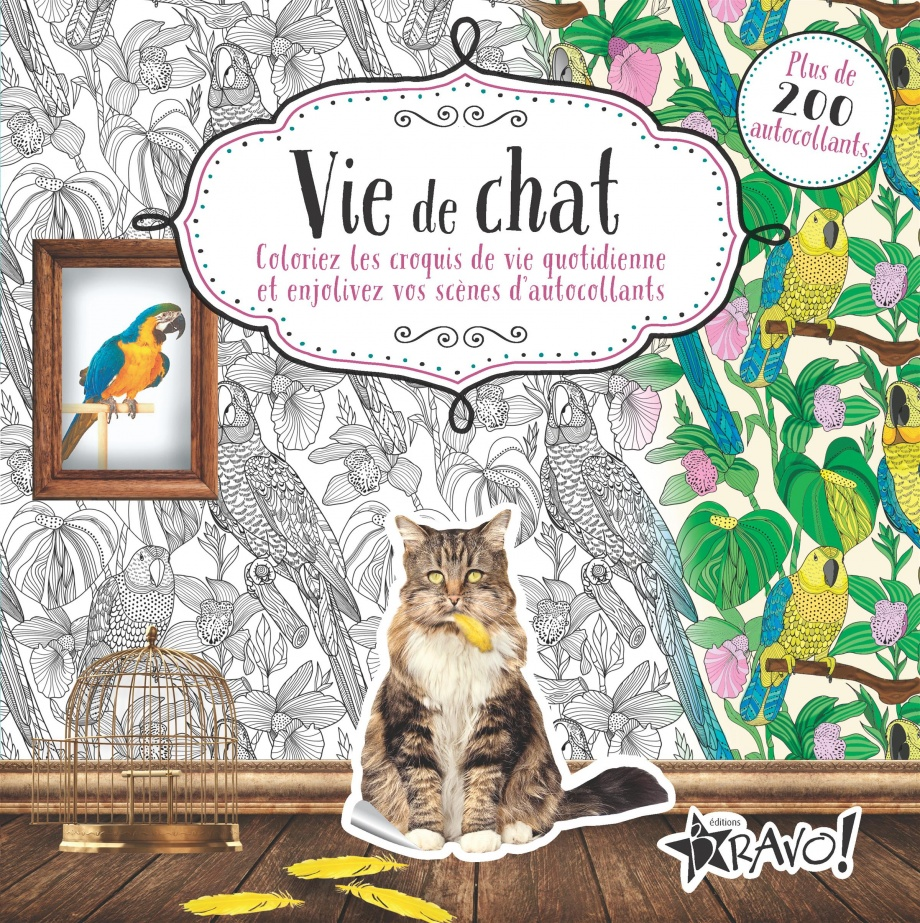 Coloriage Une Vie De Chat.Vie De Chat Coloriez Les Croquis De Vie Quotidienne Loisirs