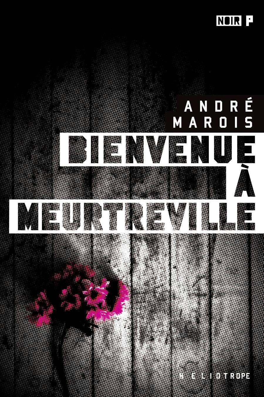 Bienvenue à Meurtreville - André Marois